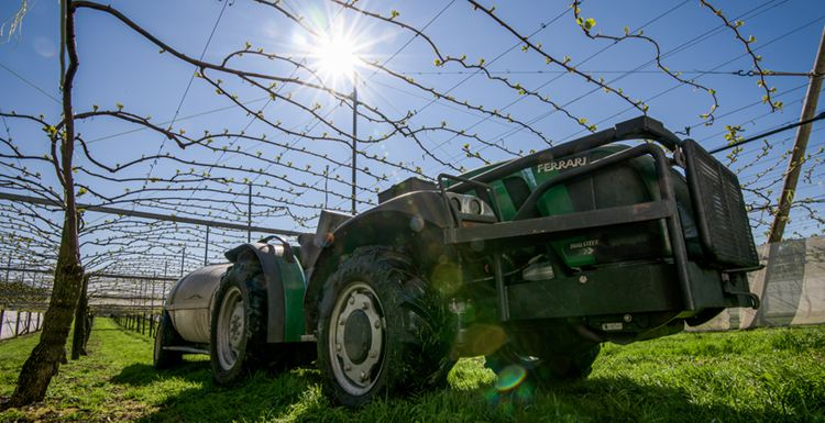 Hort Force run a specialist fleet of high power spray equipment to deal with kiwifruit orchards