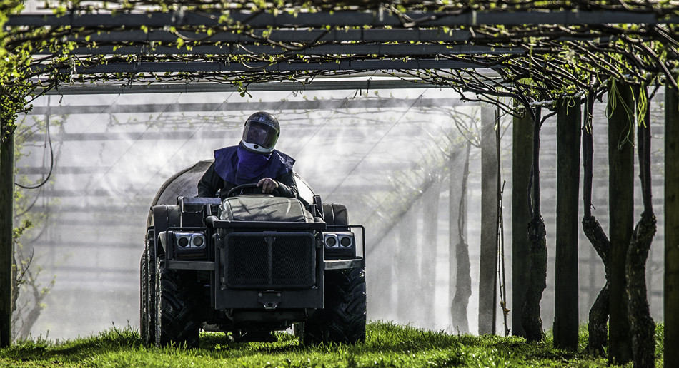 Hort Force's speciality is kiwifruit orchard spraying